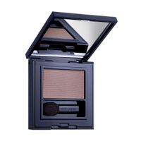 Estee Lauder Pure Color Envy Defining Eyeshadow Wet/Dry- Strong Currant