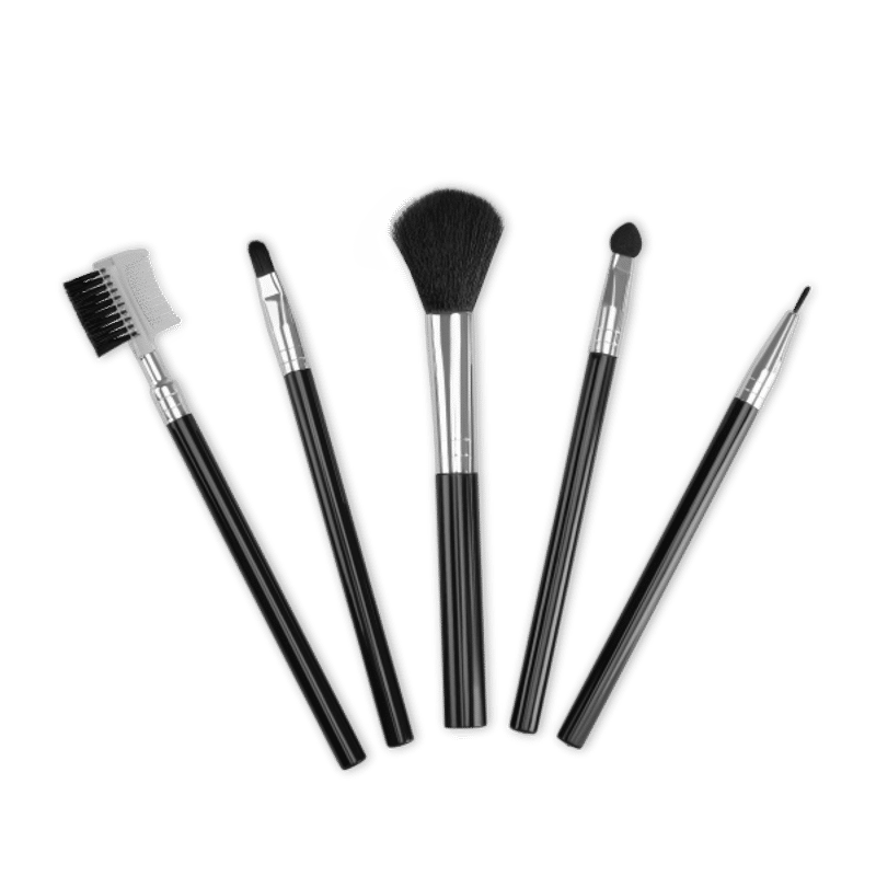 TS Makeup Brush Set Pack Of 5