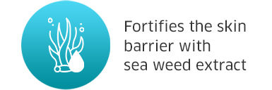 Fortifies the skin barrier with sea weed extract
