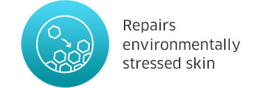 Repairs environmeantally stressed skin
