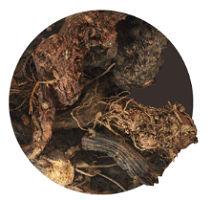 Bio Musk Root